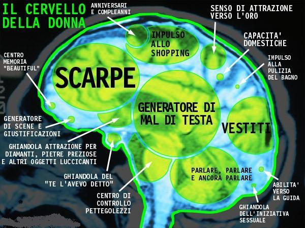 cervello femminile